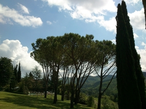 Tuscan countryside and gardens