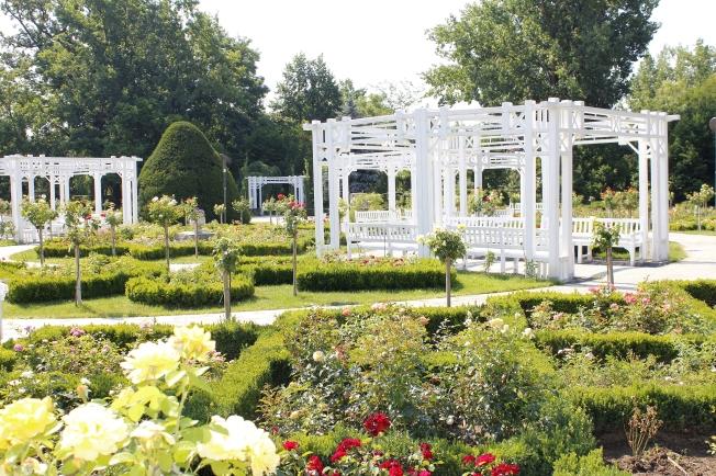 Parcul Rozelor renovat