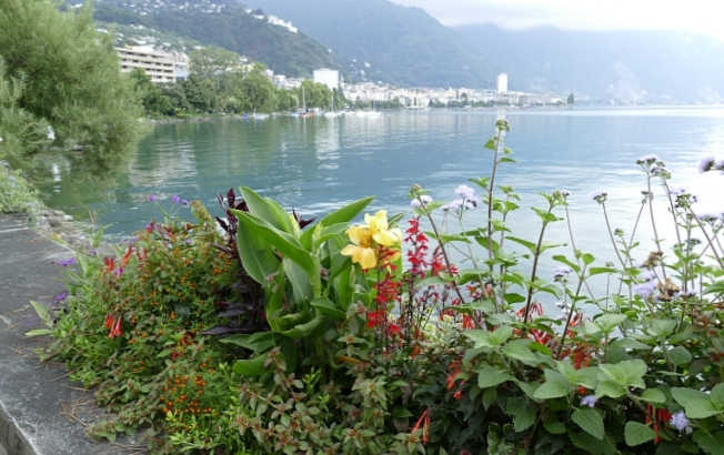 Lake Geneva (Leman) with beautiful gardens at Montreux (VD)