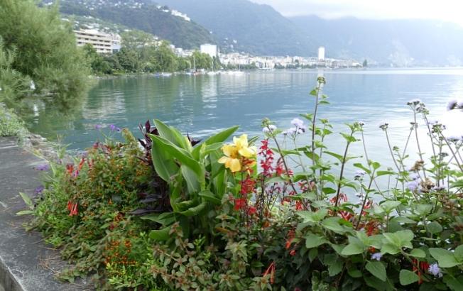Lake Geneva (Leman) with beautiful gardens at Montreux (VD)