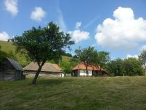Bucolic scenery in the Apuseni Mountains