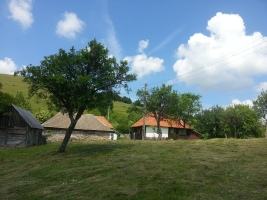 Bucolic scenery in the Apuseni Mountains