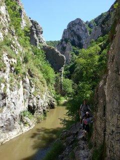 Turda Gorges (Cheile Turzii)